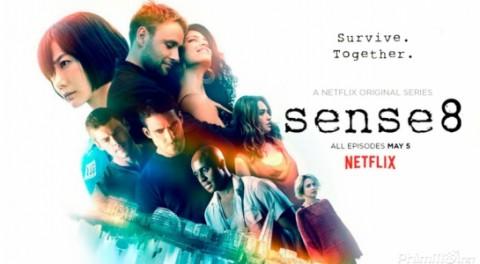 Sense-8.1